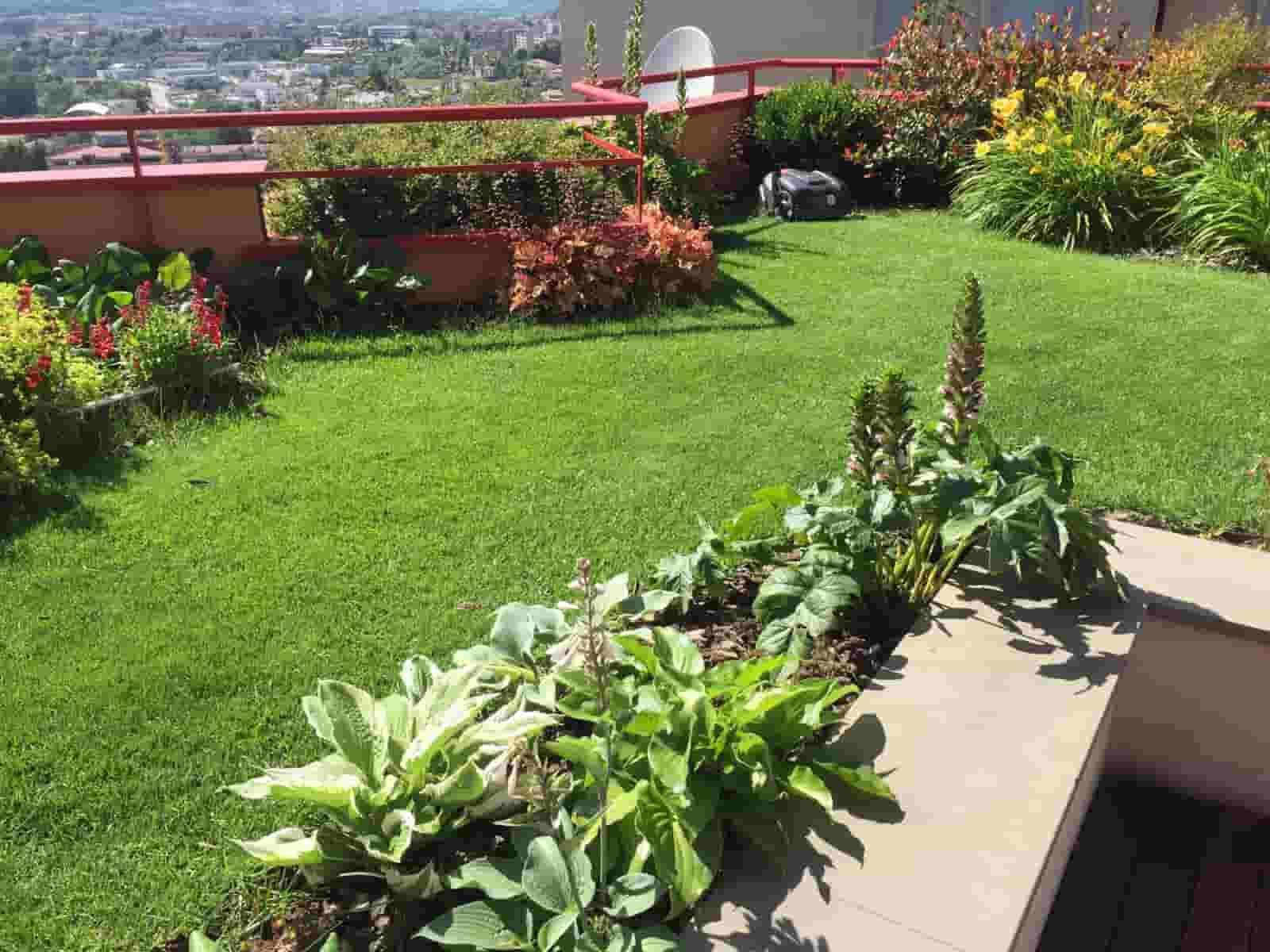 Progettare Un Giardino In Campagna giardini e ricostruzione. intervista alla dottoressa